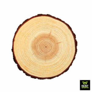 Wood Slices for Rent in Sri Lanka